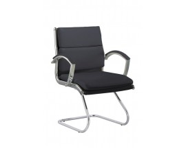 Model #20028 Holland Park Guest Chair - In Store Price $285